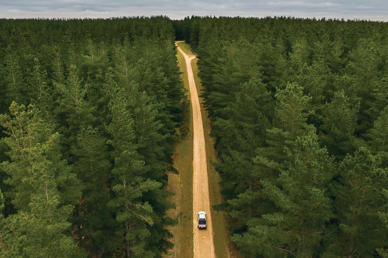 Forests recertification audit confirms OneFortyOne's sustainability credentials